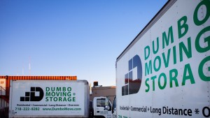 Dumbo Moving and Storage white trucks