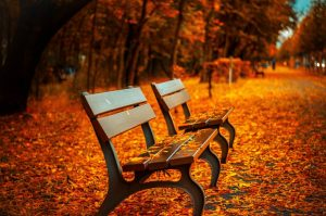 A move in autumn has its pros and cons