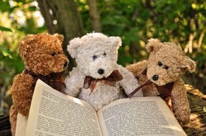 Three teddy bears with a book