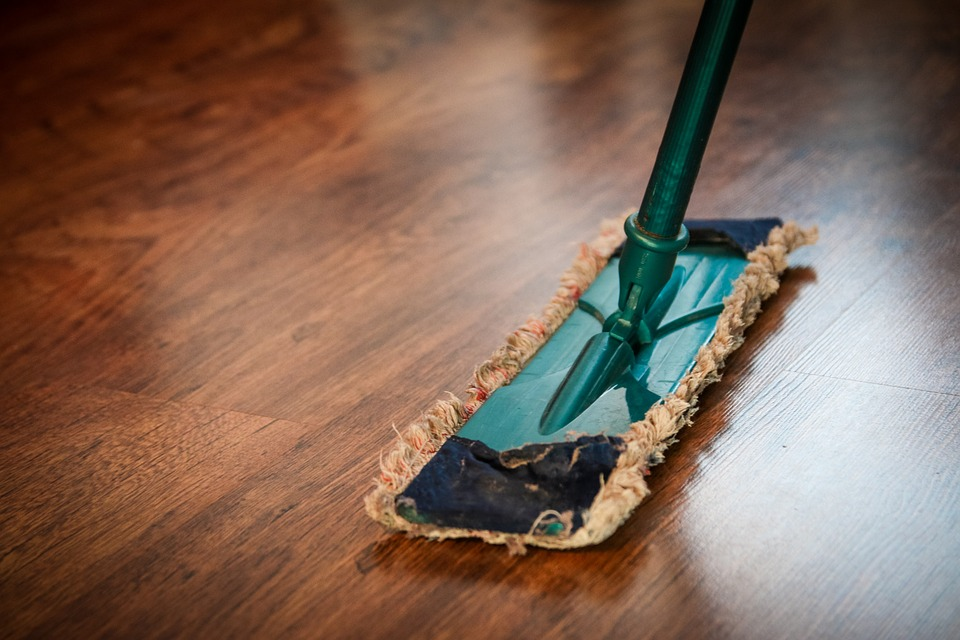 a cleaning mop