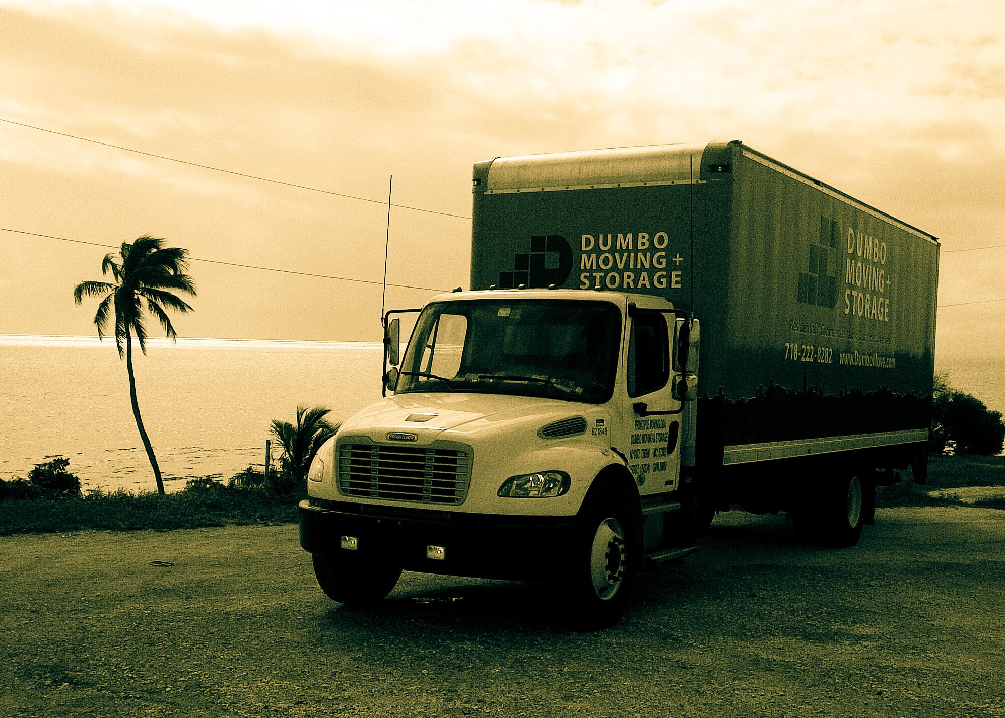 Dumbo Moving Truck Ready for Your Moving to South Carolina