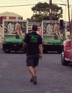 dumbo one of the best moving companies