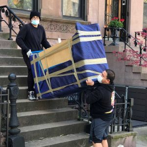 dumbo professional movers performing the move
