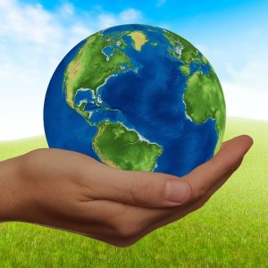 Ultimate guidelines to an eco-friendly relocation
