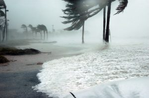 hurricane as one of the cons of moving from NYC to Florida