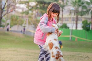 A Girl Playing With a Dog