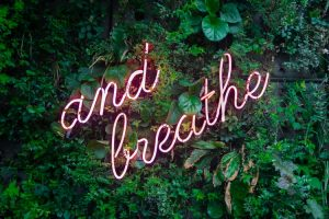 neon sign and breathe on the tree