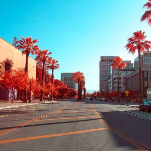 Moving from NYC to San Jose: Your Ultimate Guide