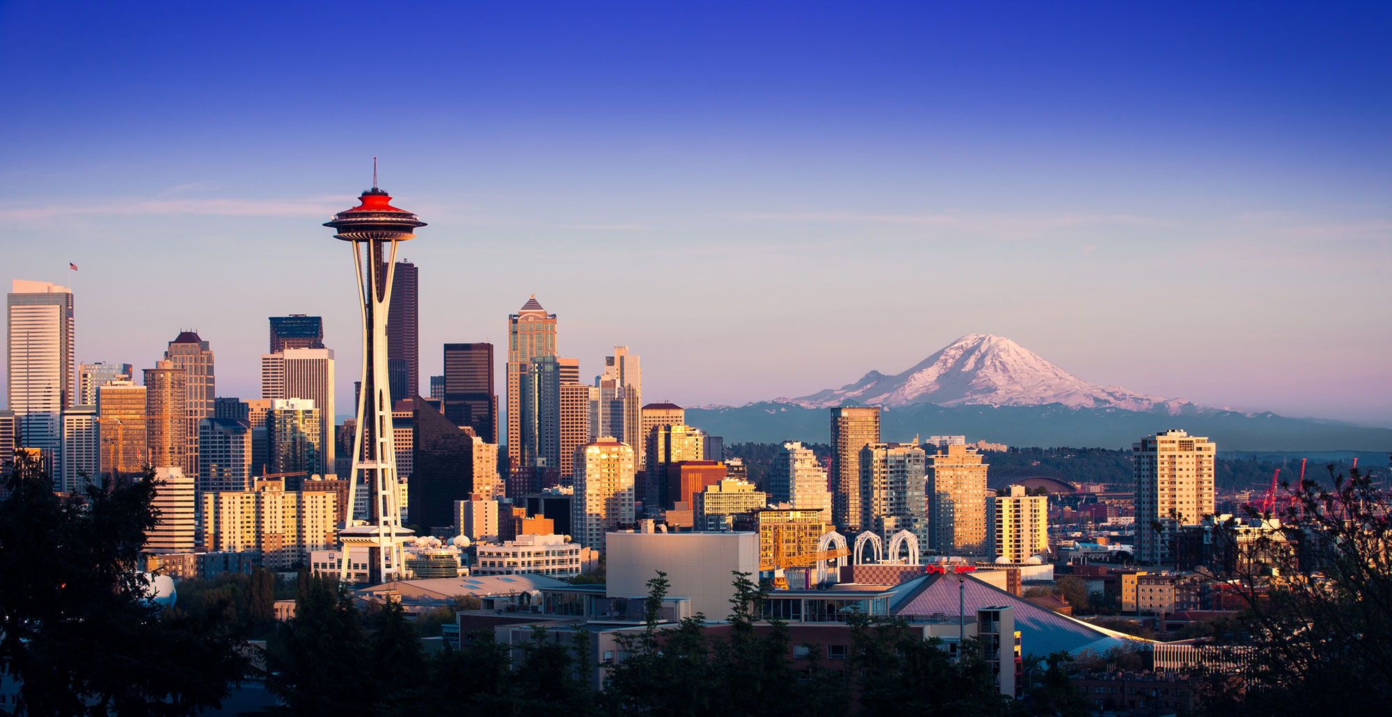 Seattle is One of the Most Dog-friendly Cities in the US