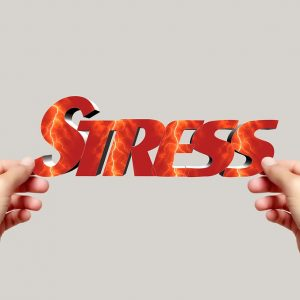 Is moving stress avoidable?